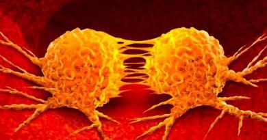 böbrek kanseri metastaz